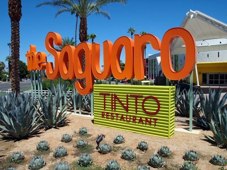 Saguaro Pool- Lesbian Travel Blog, Dinah Guide; Stay at The Saguaro Palm Springs. DopesOnTheRoad.com