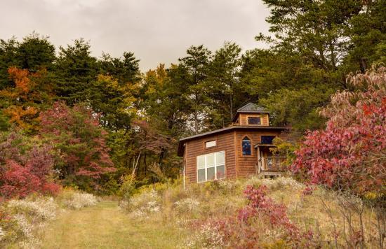 Springwood Cabin Lesbian Owned Hotel