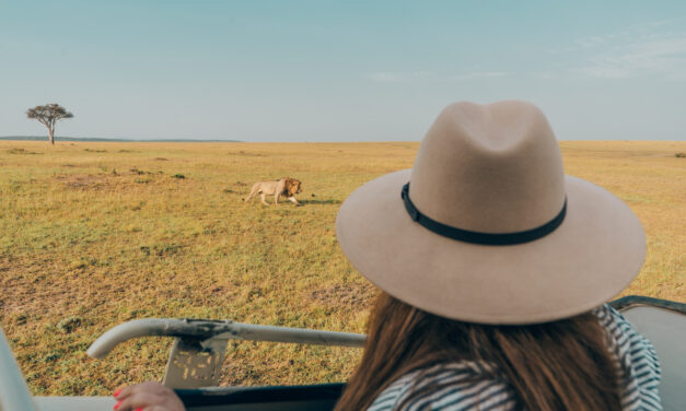 What to Wear on Safari: a full packing guide